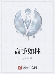 《高手如林》作者:y未央