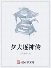 《夕夫逐神传》作者:武艺青年