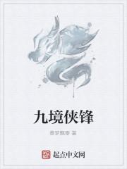 《九境侠锋》作者:葬梦飘零