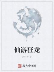 《仙游狂龙》作者:大v哥