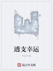 《透支幸运》作者:齐小济
