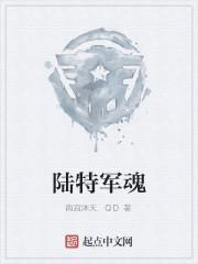 《陆特军魂》作者:南宫沐天.QD