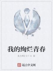 《我的绚烂青春》作者:北方雁2014