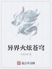 《异界火炫苍穹》作者:天龙秋波