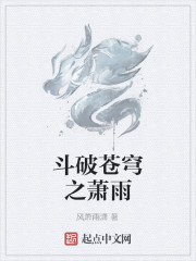 《斗破苍穹之萧雨》作者:风萧雨潇