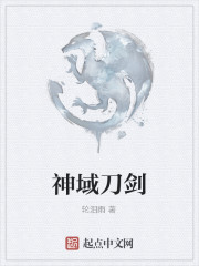《神域刀剑》作者:轮泪雨