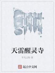 《天雷醒灵寺》作者:平凡之陆