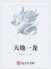 《天地一龙》作者:风痕zxc
