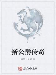 《新公爵传奇》作者:怡红公子敏