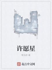 《许愿星》作者:雪为纱