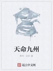 《天命九州》作者:蒋林.QD