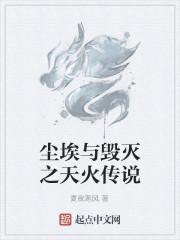 《尘埃与毁灭之天火传说》作者:夏夜寒风