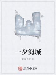 《一夕海城》作者:北城失梦