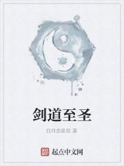 《剑道至圣》作者:日月念星辰