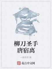 《柳刀圣手唐宿离》作者:一碗清酒
