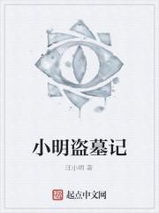 《小明盗墓记》作者:汪小明