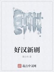 《好汉新剧》作者:潘小纯.QD