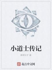 《小道士传记》作者:潇湘包子