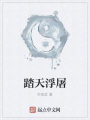 《踏天浮屠》作者:大锅菜