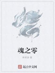 《魂之零》作者:叶君游