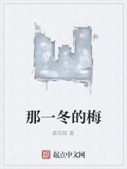 《那一冬的梅》作者:奚铭聪