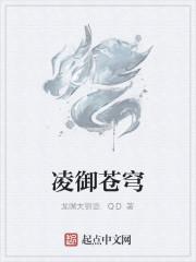 《凌御苍穹》作者:龙嘴大铜壶.QD