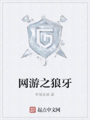 《网游之狼牙》作者:华海迷城