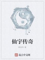 《仙宇传奇》作者:醉安年