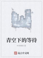 《青空下的等待》作者:林沐雨溪