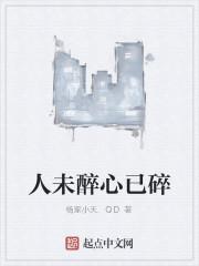 《人未醉心已碎》作者:杨家小天.QD
