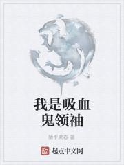 《我是吸血鬼领袖》作者:新手荣春