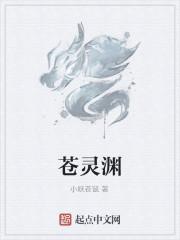 《苍灵渊》作者:小妖苍鼠