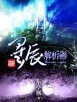 《星辰解析器》作者:东亭枫