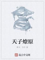 《天子燎原》作者:解文.QD