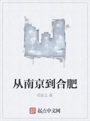《从南京到合肥》作者:范彦之
