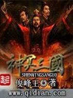 《神冥三国》作者:俊峰王