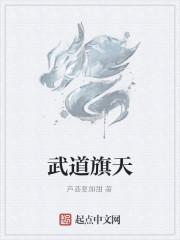 《武道旗天》作者:芦荟要加甜