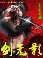 《剑无影》作者:苍苍三石