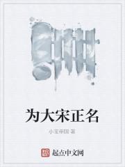 《为大宋正名》作者:小宝帝国