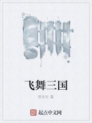 《飞舞三国》作者:普天行