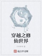 《穿越之修仙世界》作者:子木年华