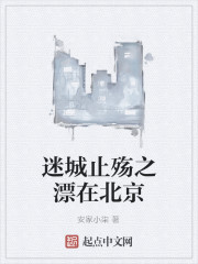 《迷城止殇之漂在北京》作者:安家小柒