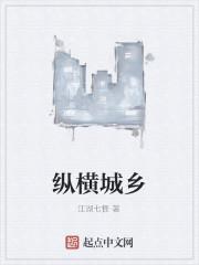 《纵横城乡》作者:江湖七怪