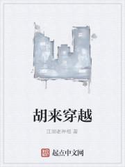 《胡来穿越》作者:江湖老神棍