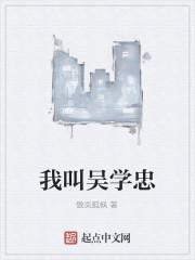 《我叫吴学忠》作者:傲岚孤枫