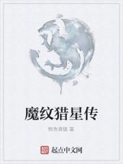 《魔纹猎星传》作者:鲍鱼蒸饭