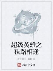 《超级英雄之狭路相逢》作者:双生骑士.QD