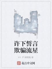《许下誓言欺骗流星》作者:VIP刘筱阳