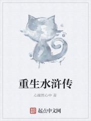 《重生水浒传》作者:心魔舞心中