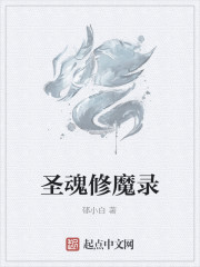 《圣魂修魔录》作者:郁小白
